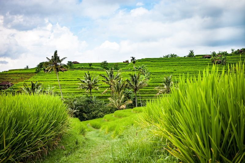 Brighten Your Skin with a Chemical Peel Treatment in Bali