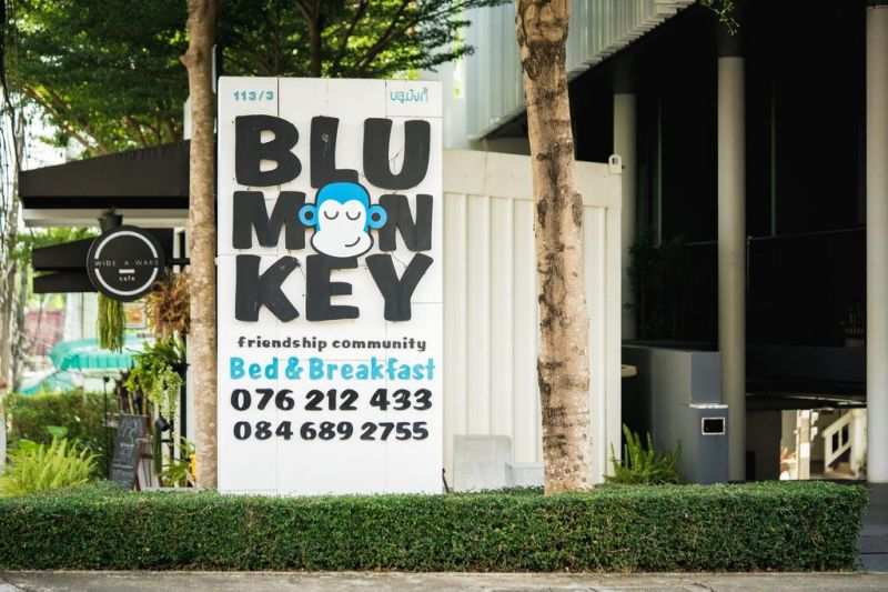 Blu Monkey Bed & Breakfast